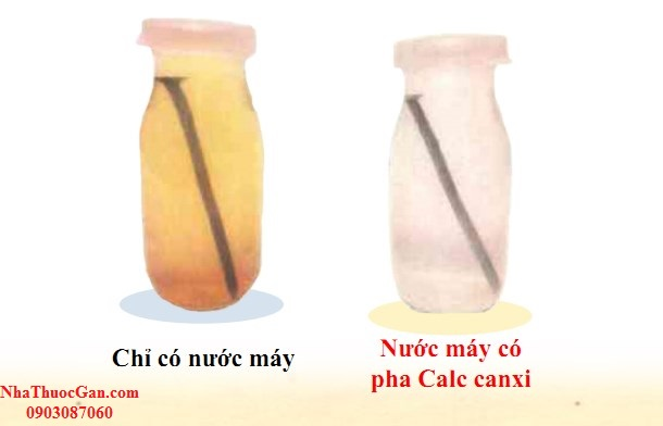 calc canxi la canxi co nguon goc tu con so duoc chiet xuat voi quy trinh dac biet