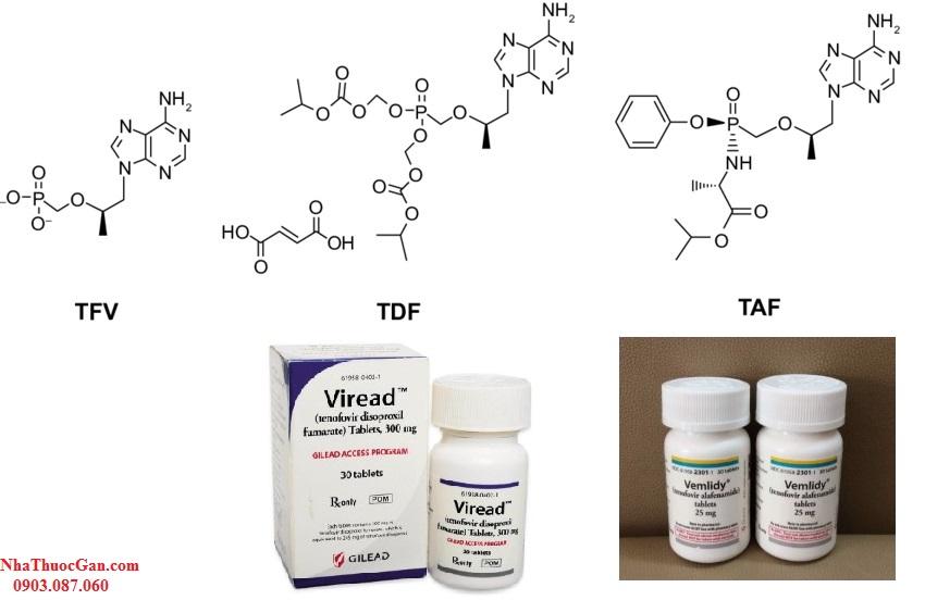 Tenofovir disoproxil fumarate (TDF) (một tiền chất của tenofovir) thuốc ức chế men sao chép ngược Nucleoside